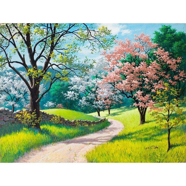 DIY obraz s krajinou - 50x40 cm 1