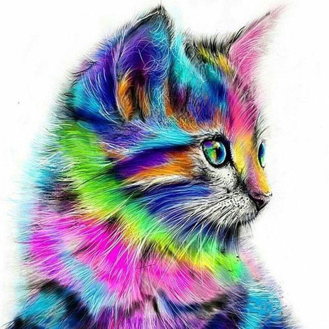 Живопись по номерам Katty 1