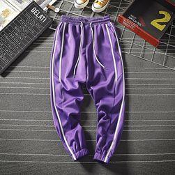 Męskie spodnie dresowe Abe