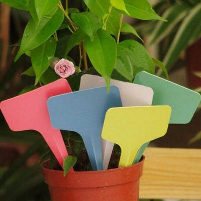 Пластиковая табличка для цветочного горшка 1
