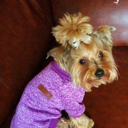 Пуловър за кученца в 13 цвята - 6 размера