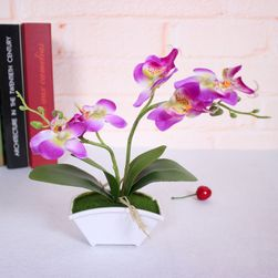 Müanyag pillangó orchidea-4 színben