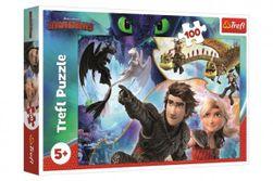 Puzzle Jak vycvičit draka 100 dílků 41x27,5cm v krabici 29x19x4cm RM_89116392