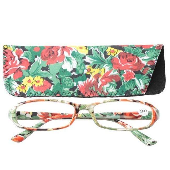 Naočare za čitanje sa futrolom B03752 1