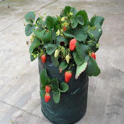Worek do uprawy owoców i warzyw