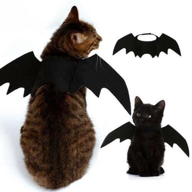 Kedi kostümü KPK86 1