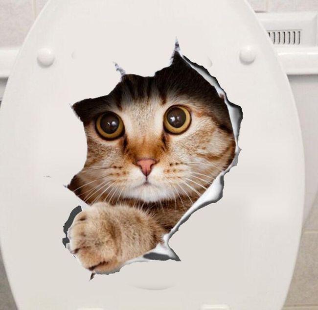 3D стикер с любопитно коте 1