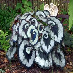 Begonia królewska 100 nasion - kilka rodzajów