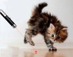 Lézeres játék macskáknak - 2 in 1
