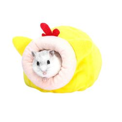 Hamster evi B05976