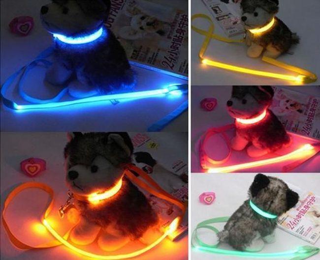 Svítící LED obojek s vodítkem pro domácí mazlíčky 1