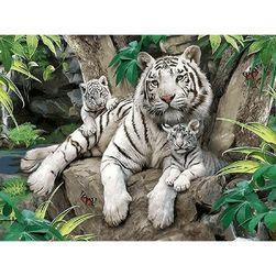 Pictură DIY - tigri albi