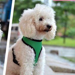 Шлейка для собаки- 3 расцветки