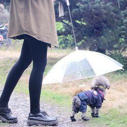 Зонтик для собак CT66