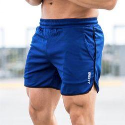 Pánské šortky Arnie
