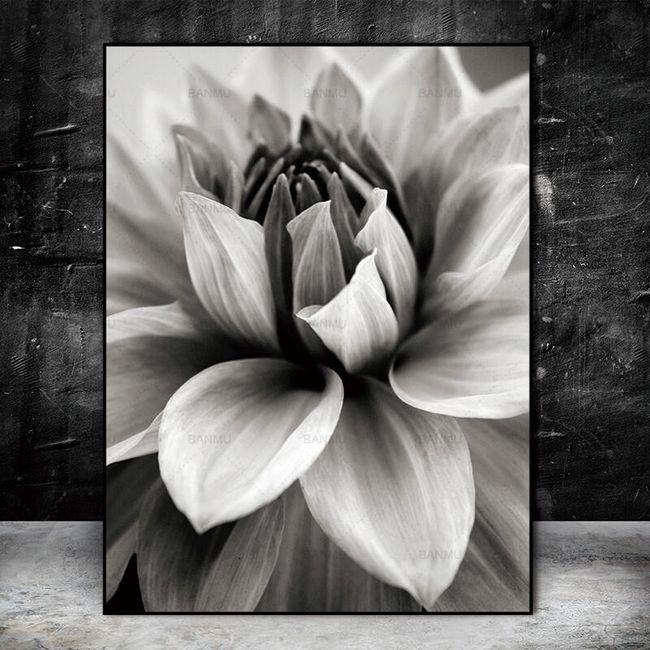 Obraz na plátně bez rámů AX12 1