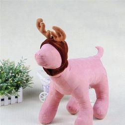 Sapka kutyáknak  rénszarvas aganccsal