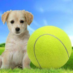 Maxi tenisák PD_1536203