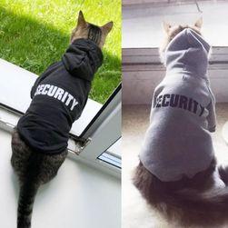 Kedi kıyafeti Amancio