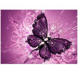 DIY kép a kövek - pillangó