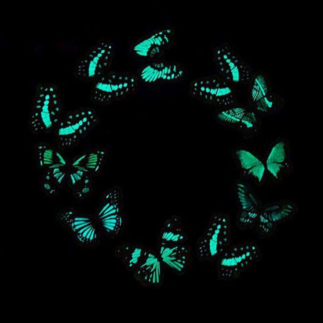 10 bucăți fluturi strălucitori 1