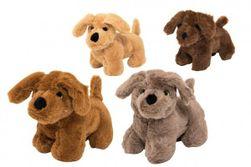 Câine de pluș cu sunet RM_56780231