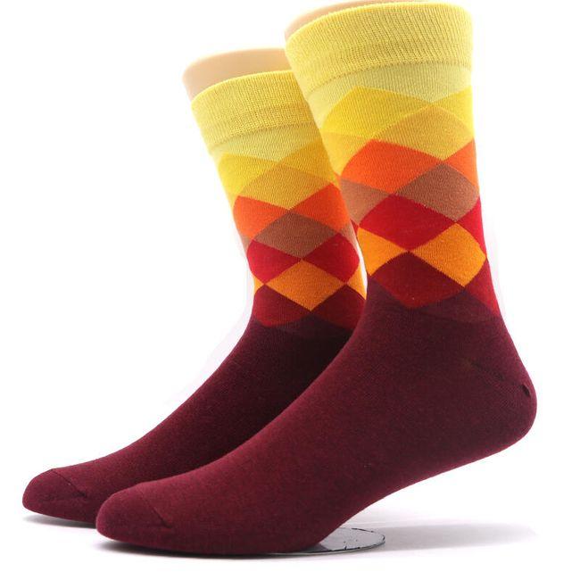 Pánské ponožky Derick 1