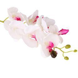 Mű pillangó orchidea - 4 szín