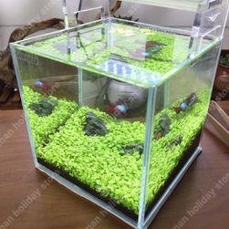 Trawa akwariowa - 1000 nasion