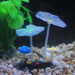 Светящиеся грибы для аквариума