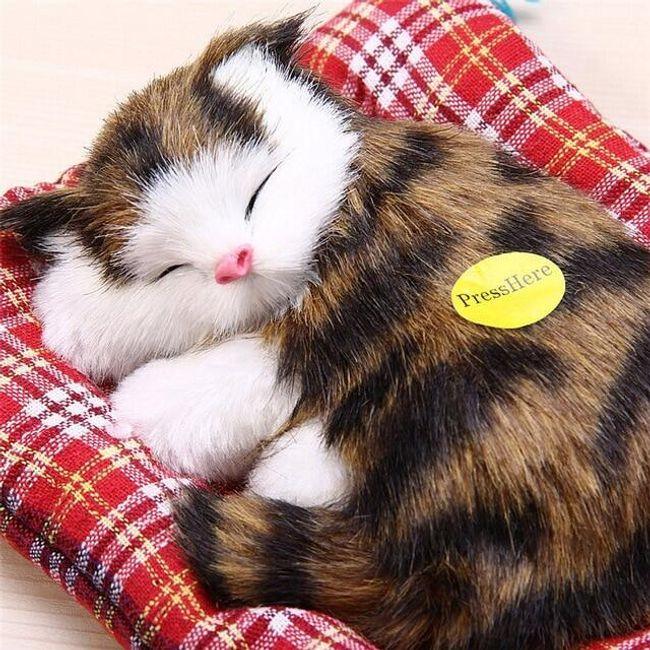 velká kočička rty zdarma videa