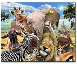 DIY obraz s žirafou a slonem - malování podle čísel