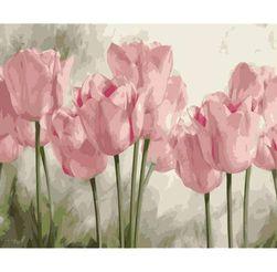 Malování podle čísel B014034