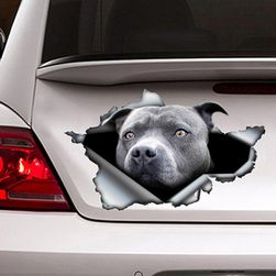 Samolepka na auto Pittie