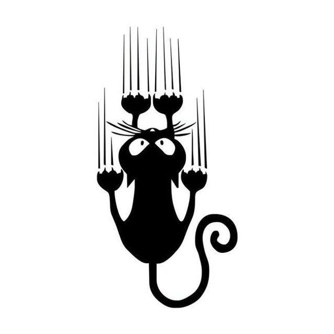 Naklejka na samochód - kot z zadrapaniami 1