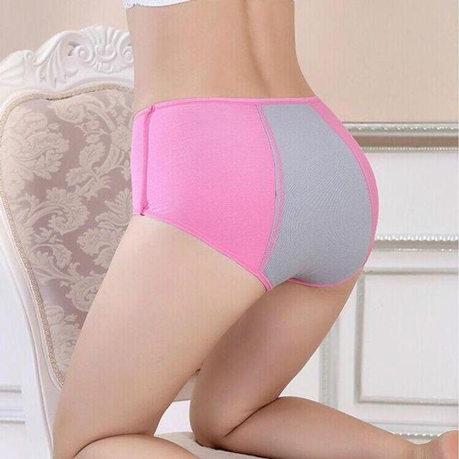 Menstruační kalhotky 1