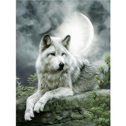 Obraz - wilk