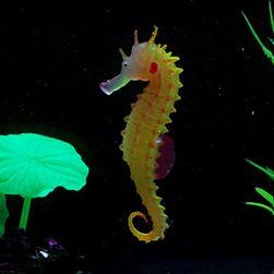 Akvárium dekoráció - tengeri ló