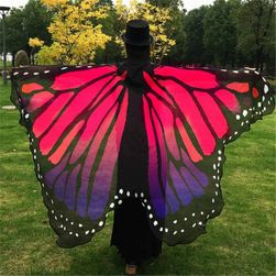 Kolorowe skrzydła motyla