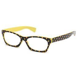 Naočare za čitanje B03940