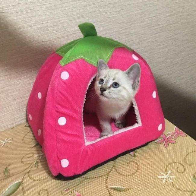 Pelíšek pro kočky B0423 1