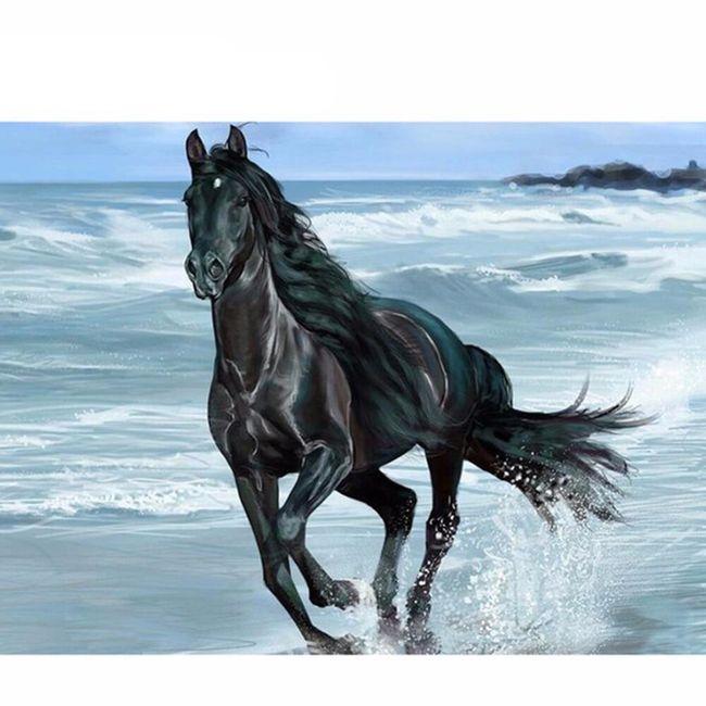 DIY kamínkový obraz - kůň na pláži 1