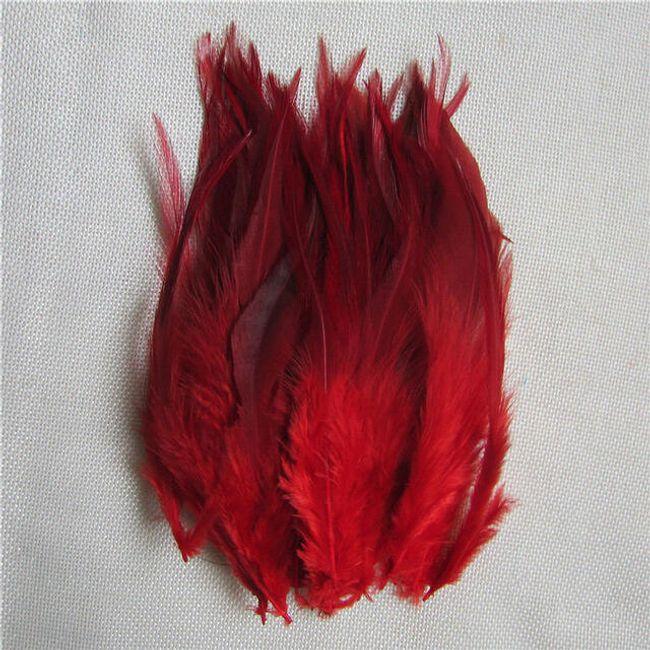 Dekorativno perje 50 komada/10 - 15 cm - razne boje 1