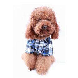 Îmbrăcăminte pentru câini Rex