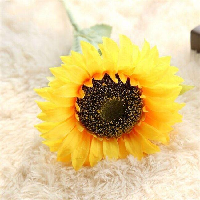 Yapay ayçiçeği Anitta 1