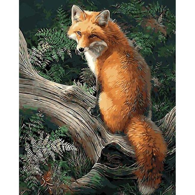 DIY obraz k vybarvení - liška 1