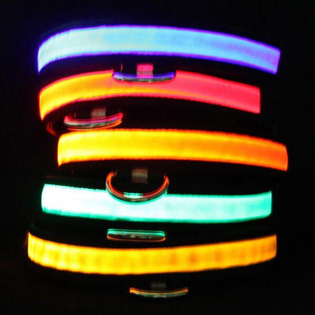 Świecąca LED obroża dla waszych pieszczochów 1