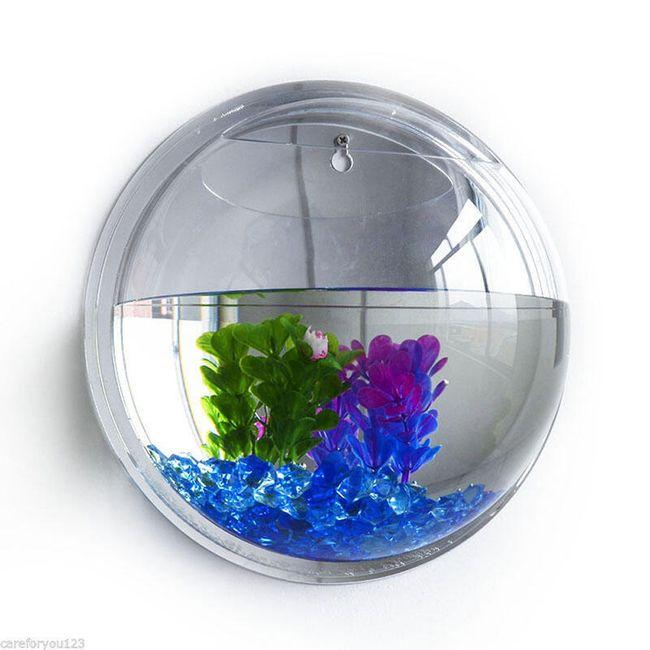Akvarijum za zid 1