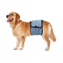 Chiloți pentru câini împotriva marcajului - 5 dimensiuni