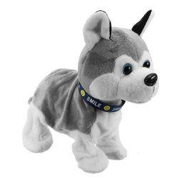 Robotický pes Ben